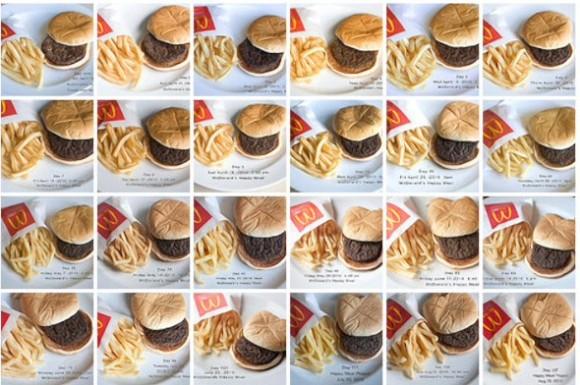 estudio de hamburguesa indestructible