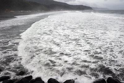 océanos-peligro-de extinción